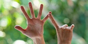 Thumb medium r0040 dwp 20120928 4570