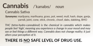 Thumb medium st0088 b a cannabis