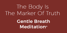 Thumb small the body is the marker of truth gentle breath meditation  copy 6